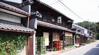 nanamagai1